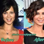 Catherine Bell Plastic Surgery Before and After Facelift and Boob Job